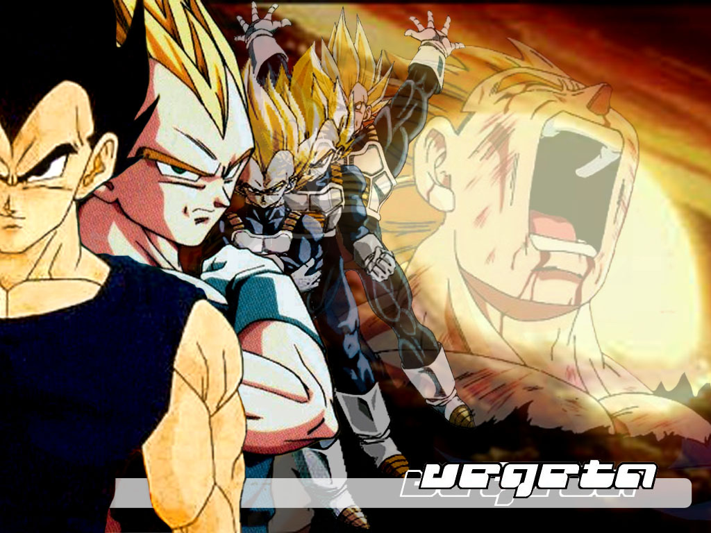 Dragon ball z wallpaper 30
