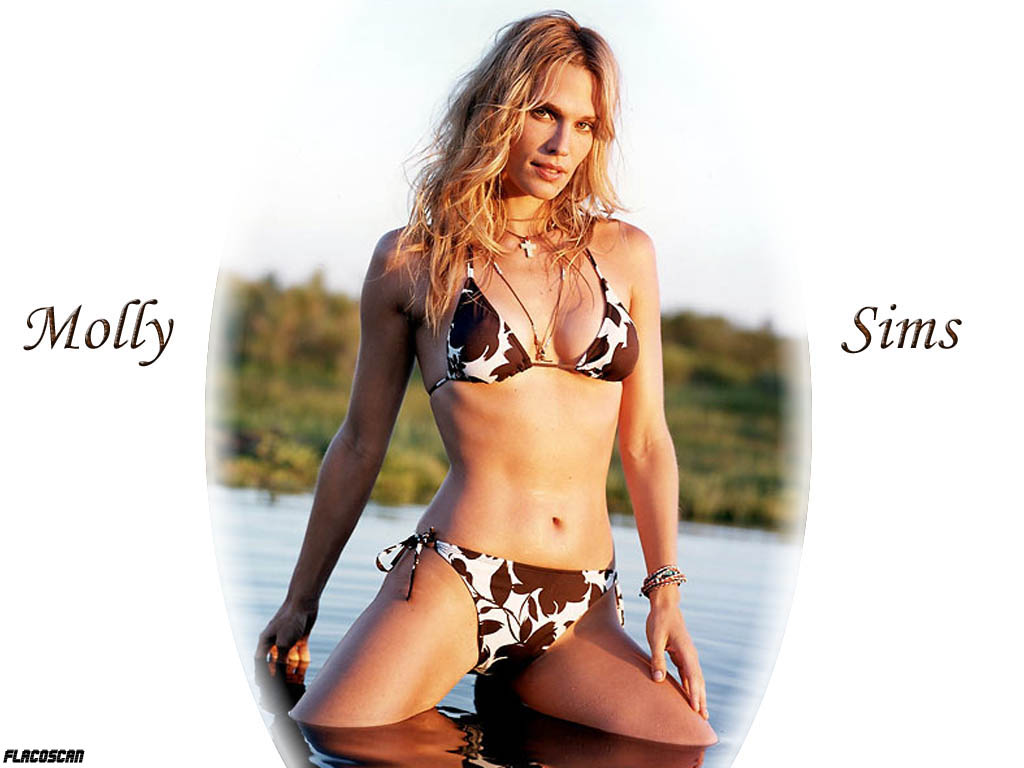 You are viewing the Molly Sims wallpaper named Molly sims 2.