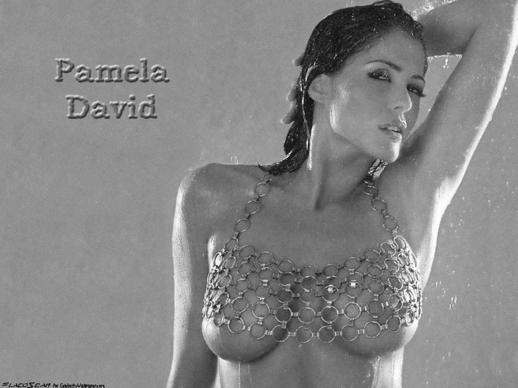 http://www.rexwallpapers.com/images/wallpapers/celebs/pamela-david/pamela_david_2.jpg