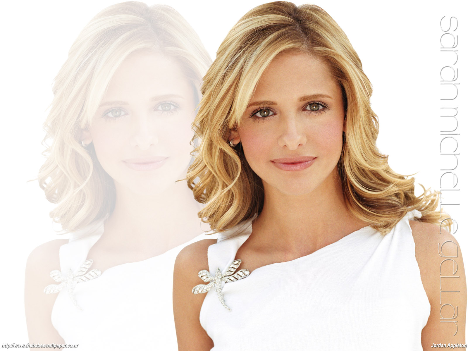 http://www.rexwallpapers.com/images/wallpapers/celebs/sarah/sarah_michelle_gellar_1.jpg