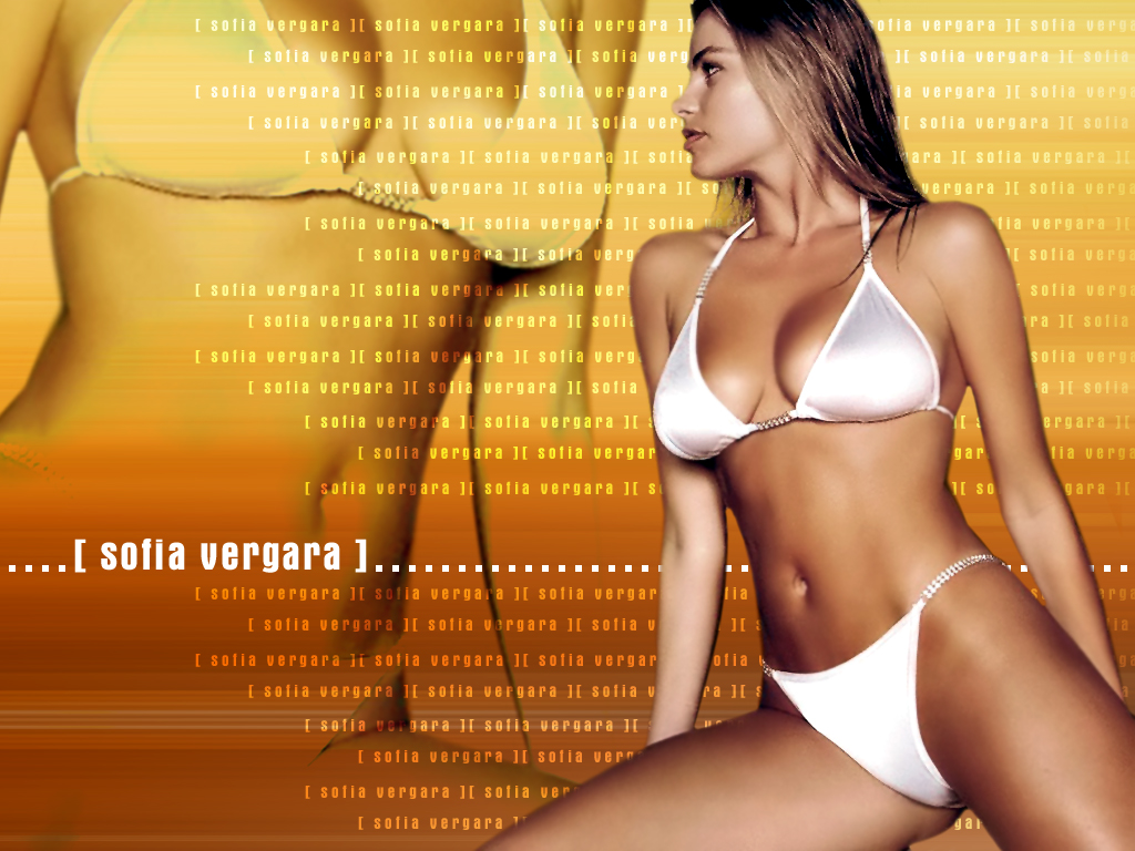 http://www.rexwallpapers.com/images/wallpapers/celebs/sofia-vergara/sofia_vergara_3.jpg