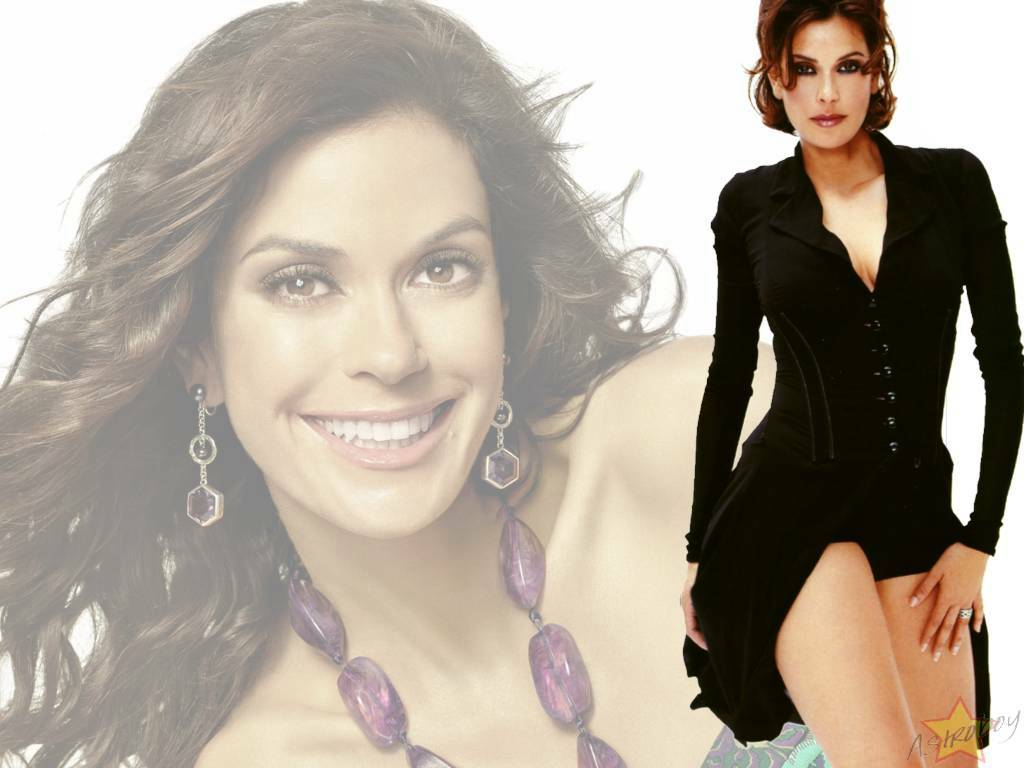 Teri Hatcher - Photos
