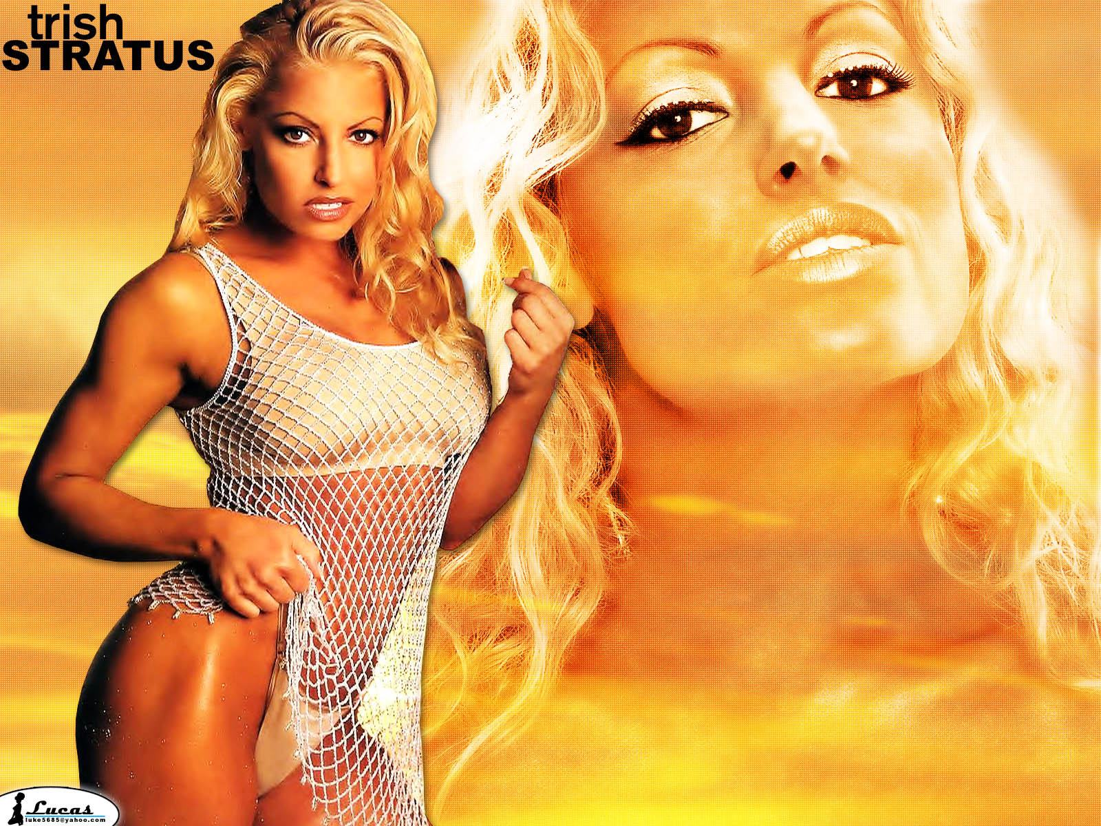 You are viewing the Trish Stratus wallpaper named Trish stratus 14.