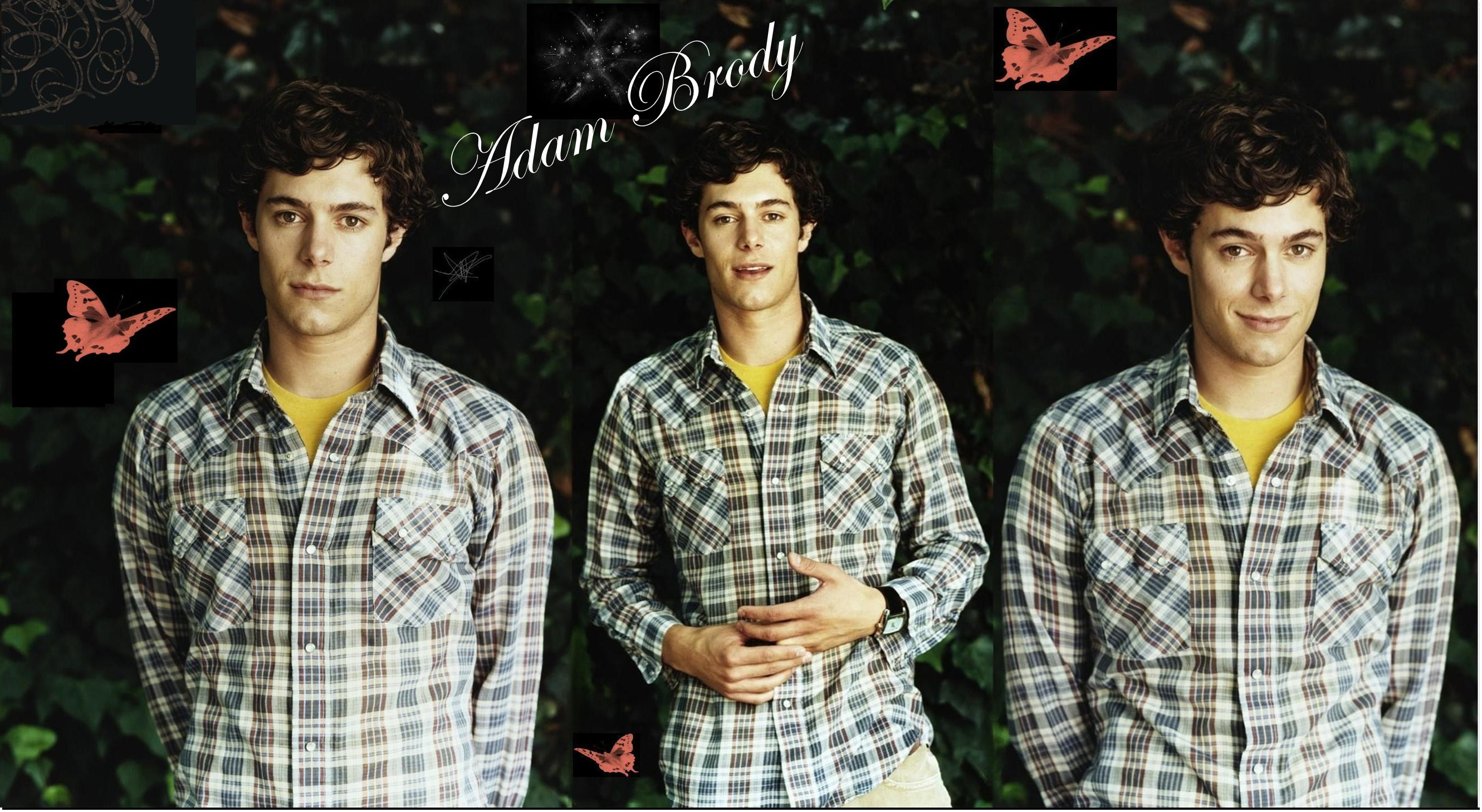 You are viewing the Adam Brody wallpaper named Adam brody 1.