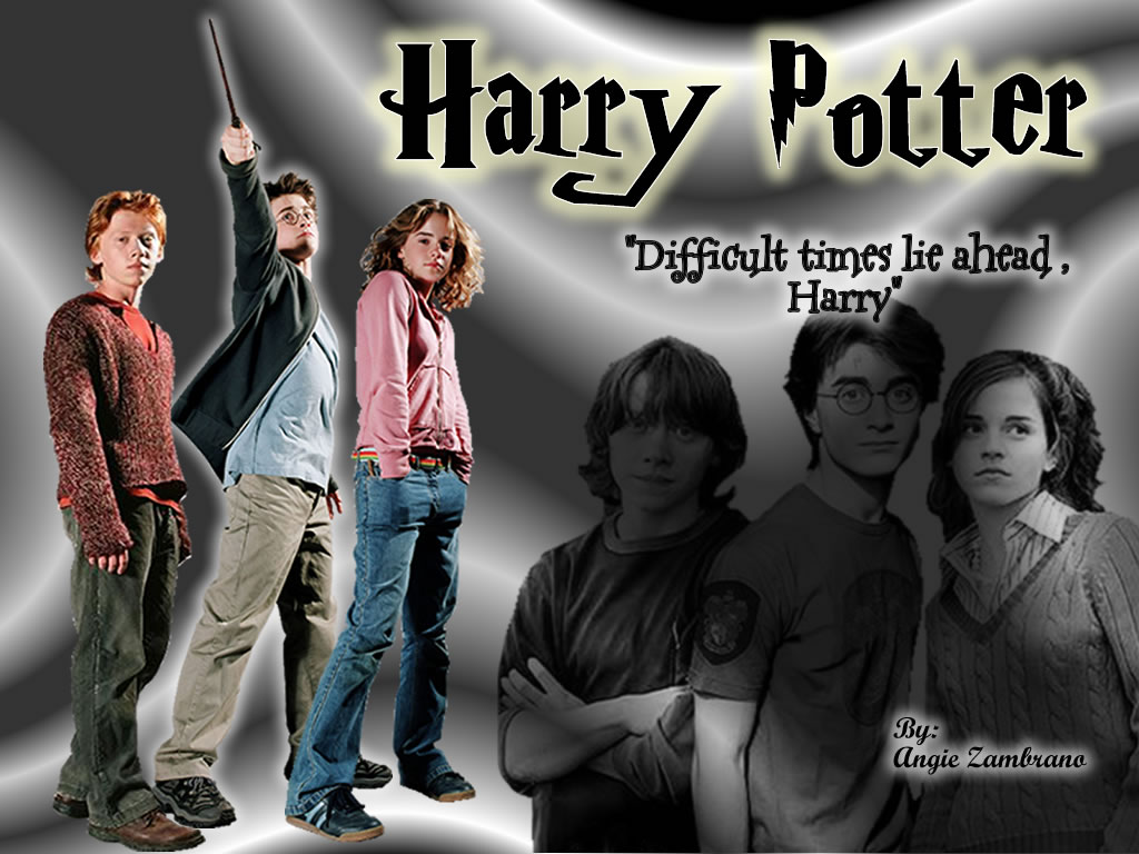Harry potter 48