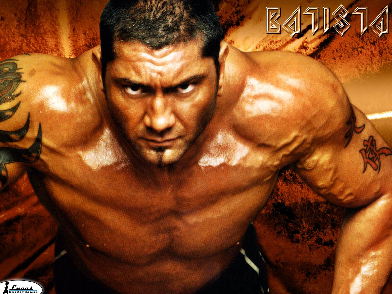 You are viewing the Wrestling wallpaper named Wrestling 46.